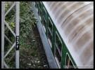 B 255, 50 54 29-48 051-8, DKV Plzeň,12.09.2011, Čes. Budějovice