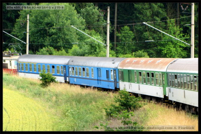 BDs 450, 50 54 82-40 164-1 (zelené) a BDs, 170-8 (modré), Děbolín, 04.06.2013