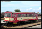 BDtax 782, 50 54 93-29 014-0, DKV Praha, Turnov, 29.06.2013