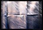 AB 350, 50 54 39-40 276-7, DKV Brno, 01.01.2013, interiér 2.třídy, záclonka