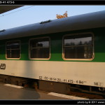 Bd 264, 50 54 29-41 475-6, DKV Brno, 01.11.2011, nápisy na voze