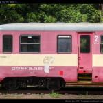 Btx 761, 50 54 29-29 309-3, DKV Olomouc, Železniční společnost Tanvald, Tanvald, 14.08.2012, pohled na vůz